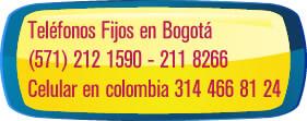 Telefonos Vital Esthetic and Spa, el mejor spa de Bogota314 466 8124